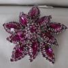Fuchsia Sherman Brooch & Earrings