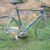 Vintage Italian 12 Speed,Gialma Carlo,Campy Equipped