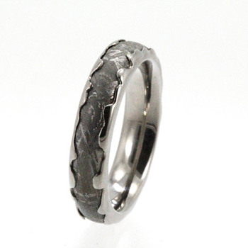 Gibeon Meteorite Palladium Wedding ring - Fine Jewelry