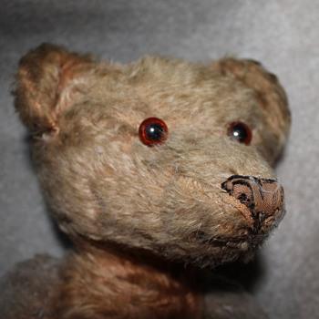 Old Teddy bear - Animals