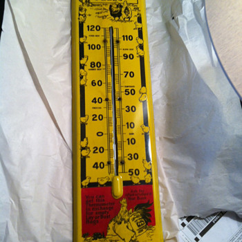 RARE? Lay or Bust Porcelain Thermometer