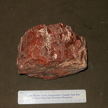 Six Inch Chunk of Petrified Wood From HolBrook Arizona - Fine Jewelry