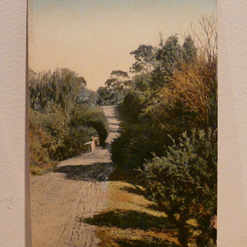 COUNTRY LANE NEAR ADELAIDE c1910. - Postcards
