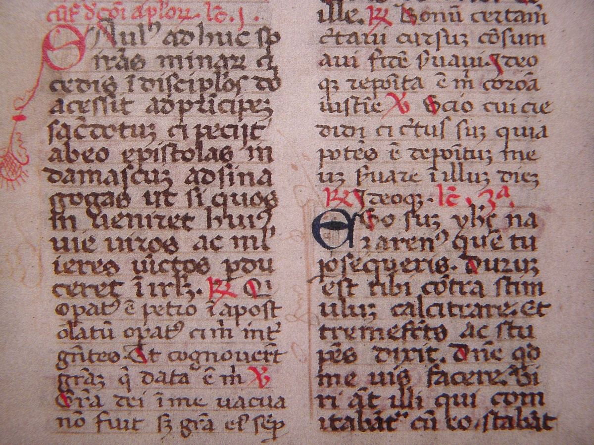 Antique Parchment W/Handwritten Latin Text~Page From The