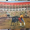 Old Matador & Bull In Ring Oil Painting Signed RJG - AJG
