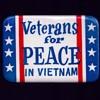 Veterans for PEACE in VIETNAM pinback button