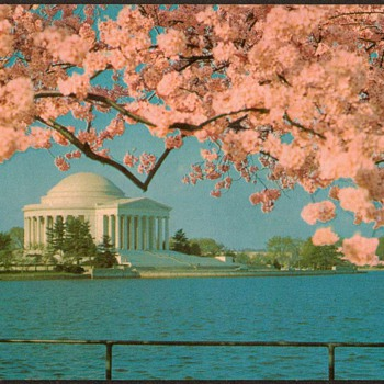 1976 - Jefferson Memorial Postcard - Postcards