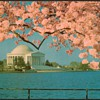 1976 - Jefferson Memorial Postcard