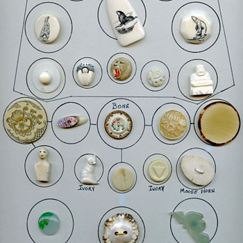 Ivory Bone Jade buttons card - Sewing