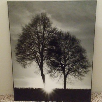 Print paintings nature - Fine Art
