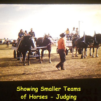History Captured in Photos..........Small Rural Agricultural Fair ( 1974 ) Post Number # 1 - Photographs