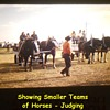 History Captured in Photos..........Small Rural Agricultural Fair ( 1974 ) Post Number # 1