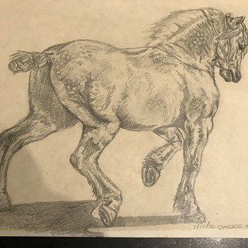 Etching mystery  - Animals