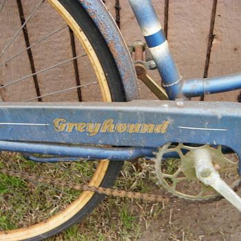 Greyhound bike