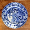 Antique Blue & White Plate ?