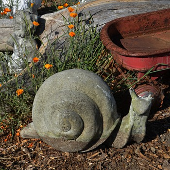 Very large and old Garden Snail - Animals