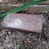 old paving brick, a.k.a. new garden decoration
