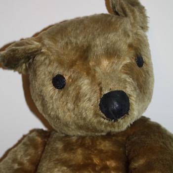 My Inherited Old Bear