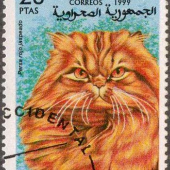 "1999 - Saharan Rep. ""Persian Cat"" Postage Stamp - Stamps"