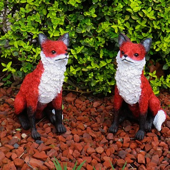 Little Red Kit Foxes - Animals