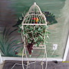 Wrought Iron Bird Cage
