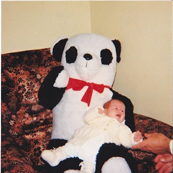My first Panda