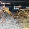 Firestone pilot Bike