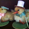 Victorian Ducklings in Easter Attire