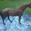 Hubley Cast Iron Horse