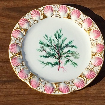 Antique Royal Worcester For Tiffany's New York Raised Sea Shell Decorative Plate - China and Dinnerware