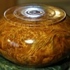 Large Burl Covered Box - a Dapa from Bhutan