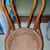 Oak cane bottom chair
