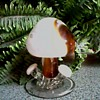 Cristales De Chihuahua, Juarez Mexico / Hand Crafted Glass Mushroom Cluster /Unknown Age