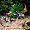 The Green Phantom Bicycle