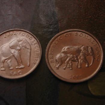 Elephant coins