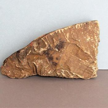 Prehistoric Coprolite Fragment - Animals