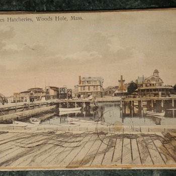 1911 Postcard from United States Hatcheries, Wood's Hole, Mass.