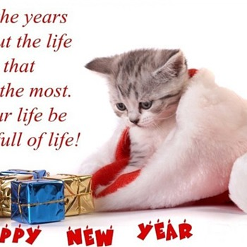 Happy New Year to All ****** !! - Photographs