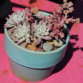 Garden City Flower Pots - Pottery