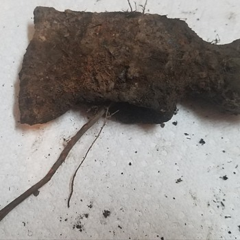 Help Identifying Age of Axe/Hatchet Found Metal Deteting - Tools and Hardware