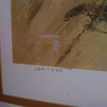 Signed and numbered lithograph, can't read signature - Fine Art