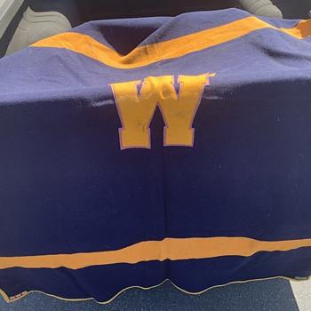 Vintage Pendleton blanket - Rugs and Textiles