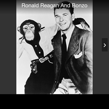 President Reagan and chimpanzee  - Photographs