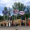 Lion Gas