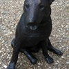 Bronze Miniature English Bull Terrier