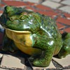 Ceramic Frog - nicely glazed and signed by 'Edith' and '1967'.