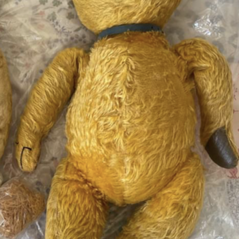 Ted - Dolls