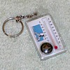 """""""Elk Woods"""" Thermometer/Compass Keychain"""