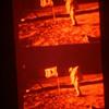 Apollo 11 transparancies