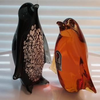 Pilgrim Glass penguins  - Animals